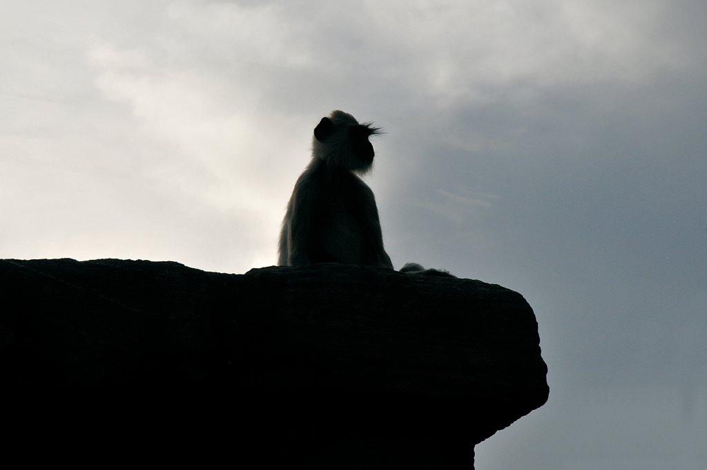 SRI-LANKA-097